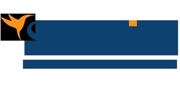 sunbird fx отзывы