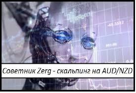 советник Zerg